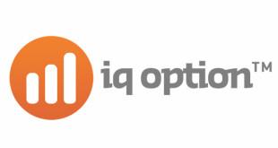 iq-option_logo